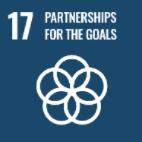 SDG-17
