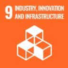 SDG-9